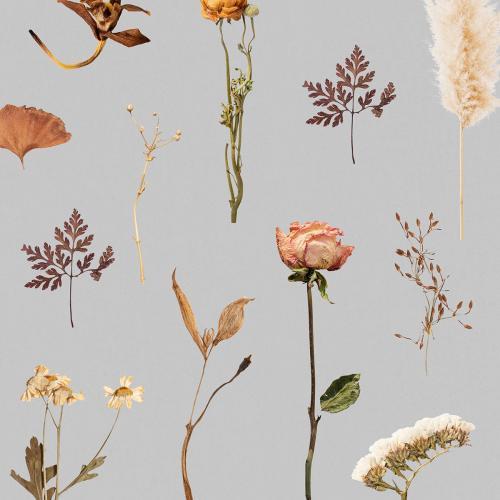 Workshop bloemschikken - thema herfst