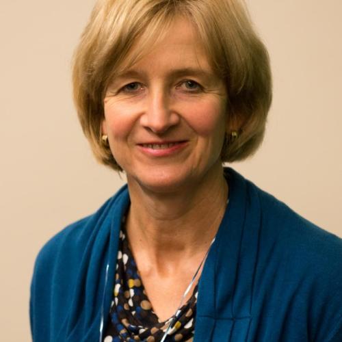 Ann De Ridder, ocmw-raadslid