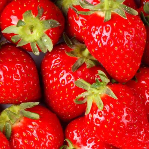 Vlezenbeekse aardbeien